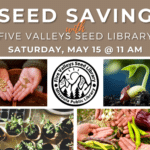 Seed Saving with Five Valleys Seed Library