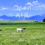 Open AIR Artist Talks